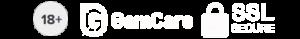 Online Casino Footer Logos